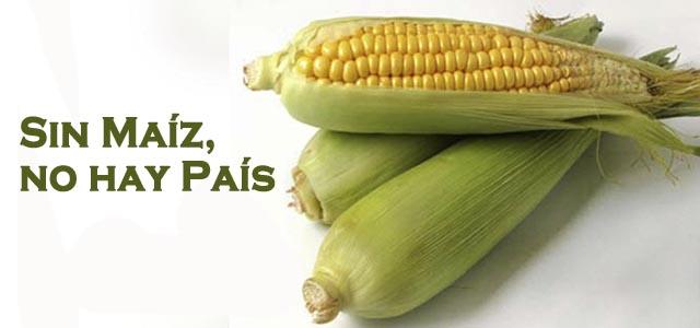 maiz.jpg/